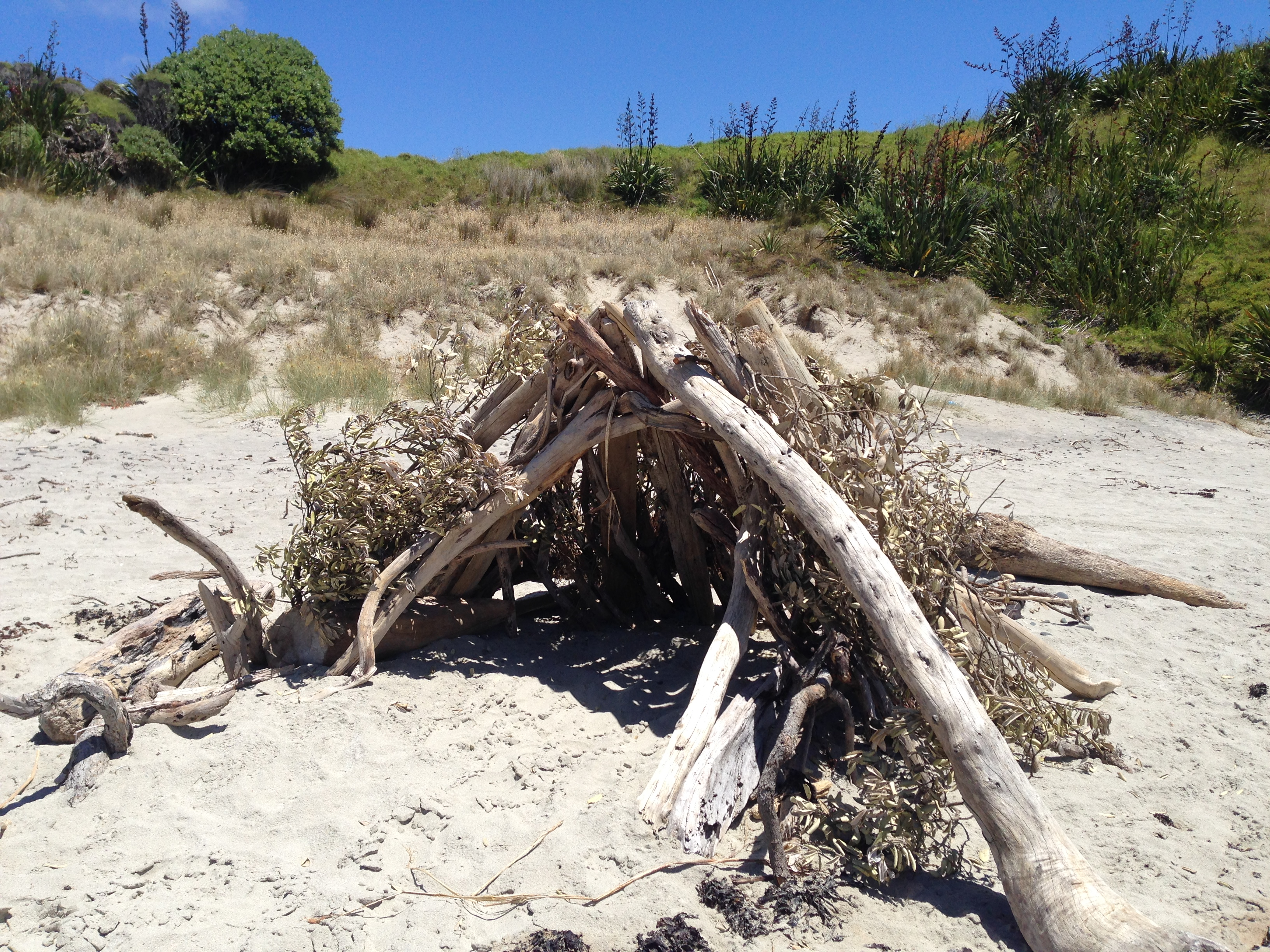 Old tree branches made into a shade-fort on the beach.